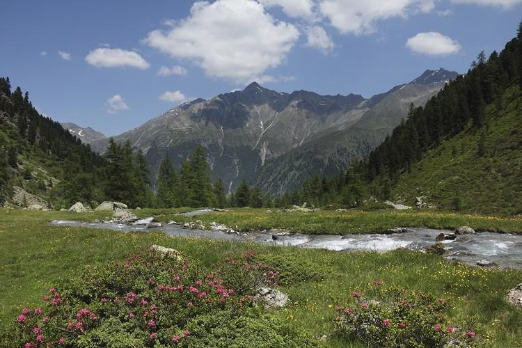 Najwspanialsze wakacje - tylko w górach!